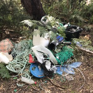 Plastic garbage washes up even in a place as remote as Stephens Beach