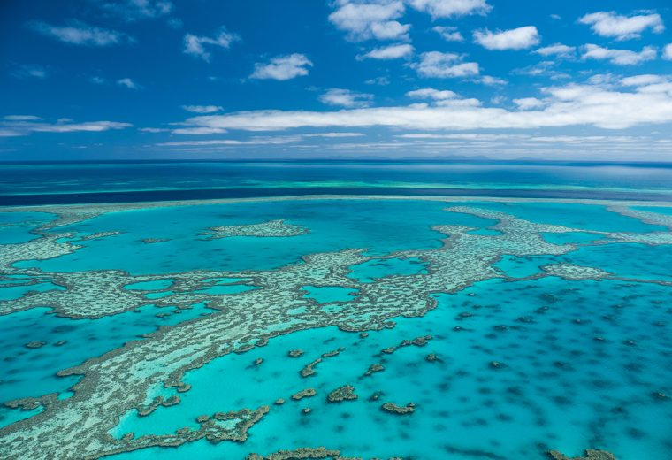 Learn about the Great Barrier Reef