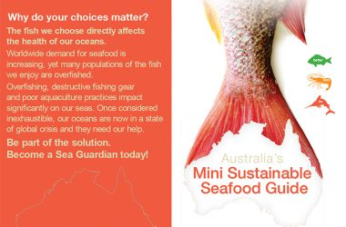 Crystal Crabs and Cuttlefish: Trusted sustainable seafood guide gets a dozen new varieties