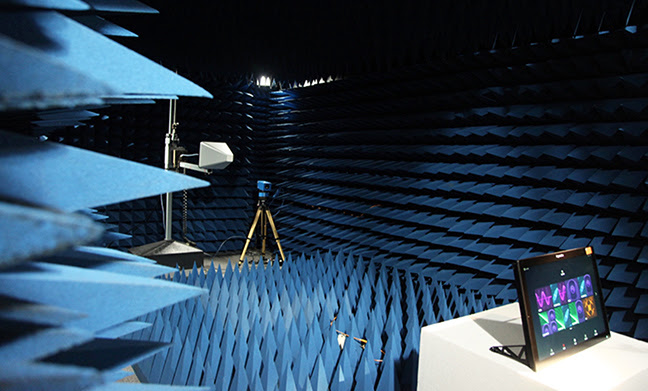 Raymarine testing - electromagnetic interference
