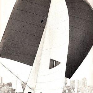 18 foot skiff Thomas Cameron under her big spinnaker on Sydney Harbour