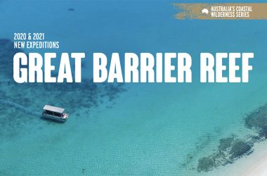 Coral Expeditions to restart on the Great Barrier Reef