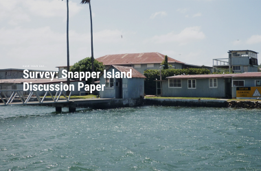 Have your say – Snapper Island