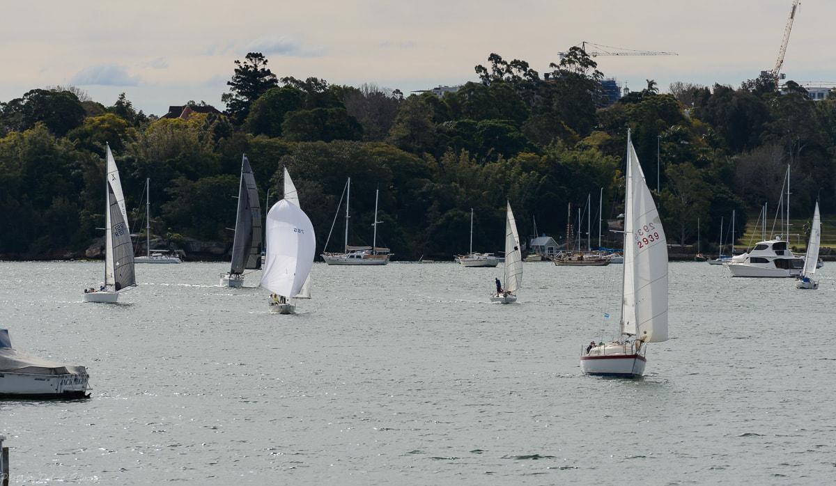 PRSC yachts sailing
