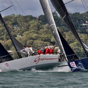 2nd overall Ginger & bow of Dark Star beating to the top gate_credit Tilly Lock Media