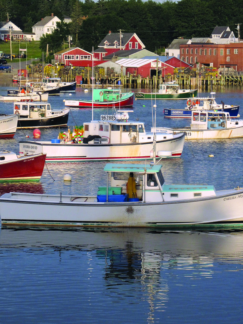 Lobster boats moored at Bass Harbour, Maine